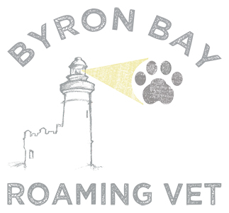 Byron Bay Vet